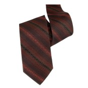 Silk Ties 069 9