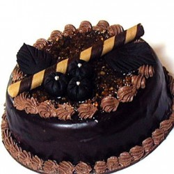 Chocolate Truffle Cake - 1Kg (Cake Point)