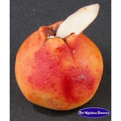 Cashew Pomegranate (Sri...