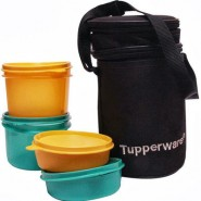 Tupperware Executive 4 Containers Lunch Box(1000 ml)