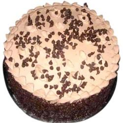 Choco Chips Cake