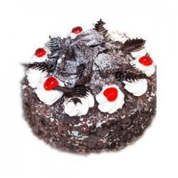 Black Forest Cake - (Cake Point)