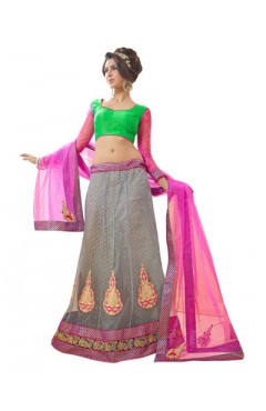 Embroidered Grey Soft Net Heavy Border Lehenga Choli