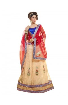 Embroidered Beige Soft Net Heavy Border Lehenga Choli