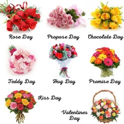 Floral Surprise - 8 days