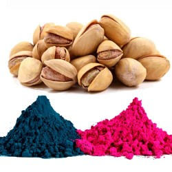 Colors of Pista